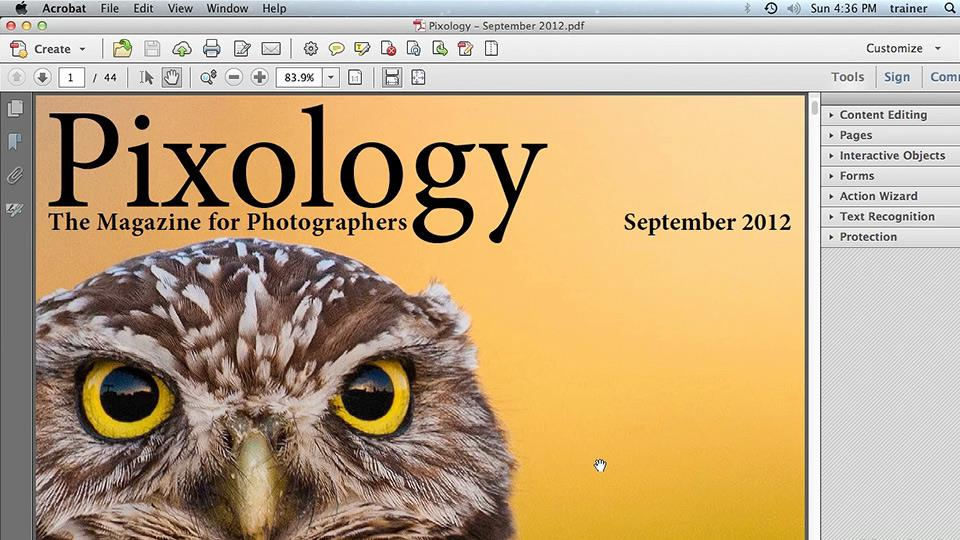 PDF - Online Courses, Classes, Training, Tutorials on Lynda