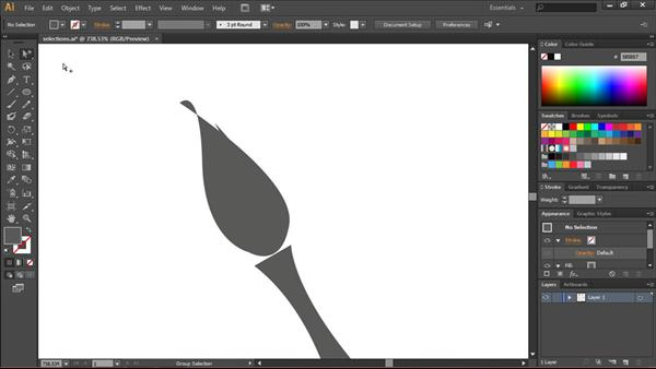 Lynda.com - Illustrator CS6 Essential Training Software Prices