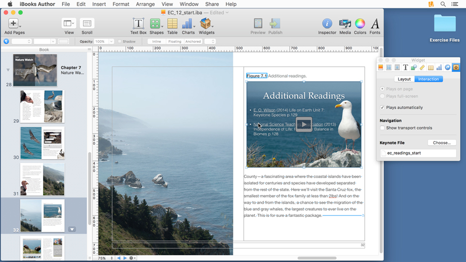 Adding an interactive image: iBooks Author Essential Training