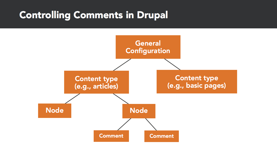Drupal 8 Essential Training: 2 Building Out Your Website