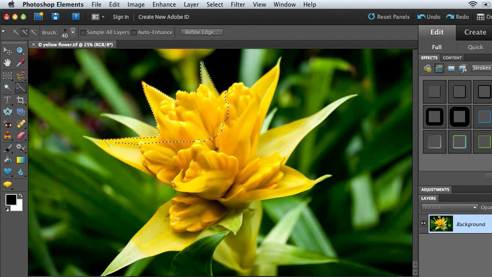 Welcome: Combining Images with Photoshop Elements 9