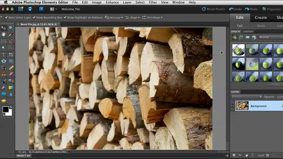 Welcome: Quick Fixes with Photoshop Elements 10