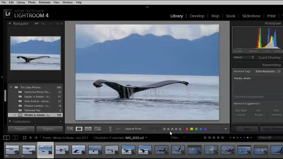 Welcome: Lightroom 4 Image Management Workshop