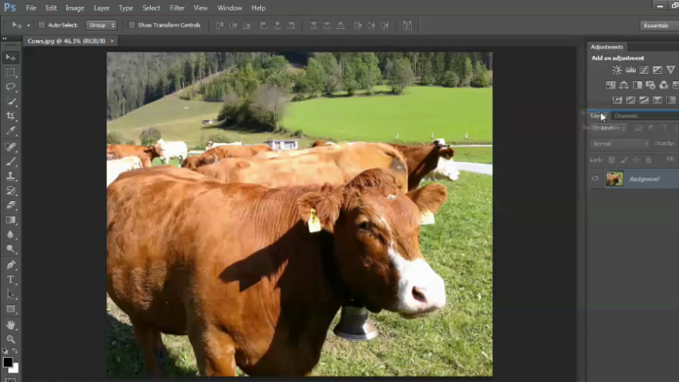 Welcome: Photoshop CS6 Image Optimization Workshop