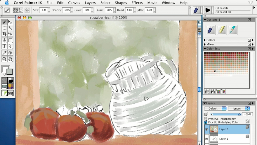 saving custom brushes: Getting Started with Corel Painter IX