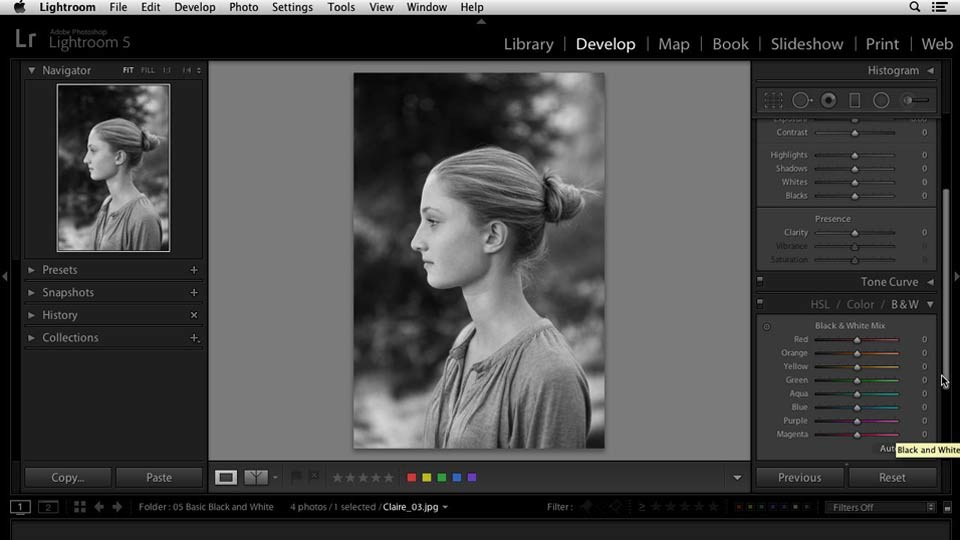 Welcome: Lightroom 5 Essentials: 03 Develop Module Basics