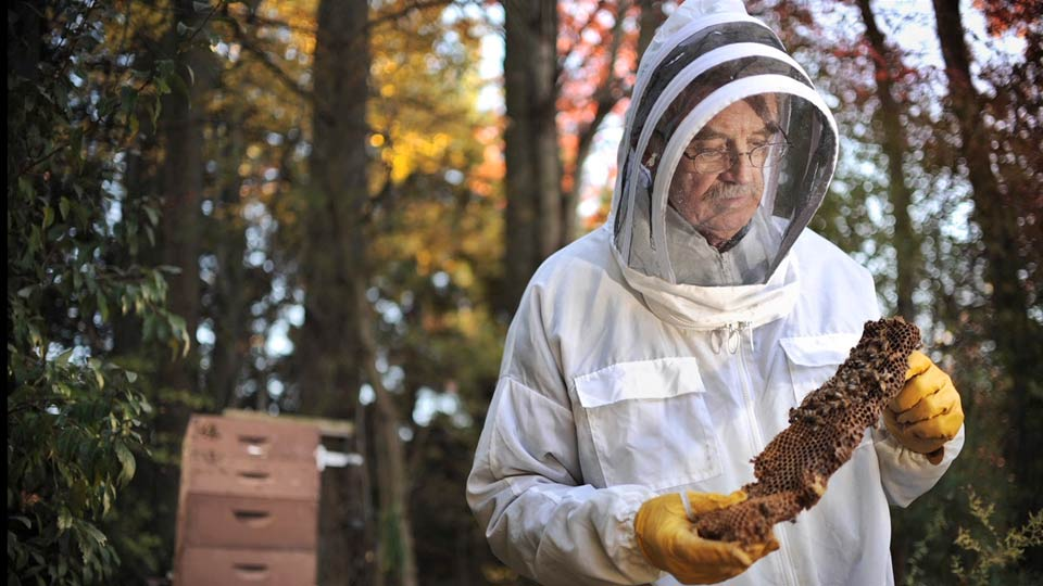 Setting the stage: Lighting with Flash: Portrait of a Beekeeper and His Bees