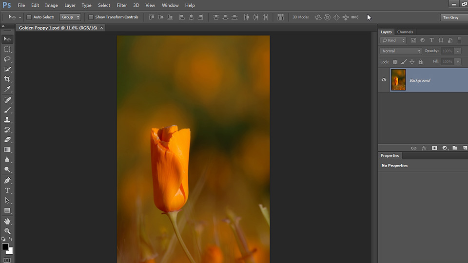 Welcome: Photoshop Artist in Action: Tim Grey's Photo Optimization Techniques