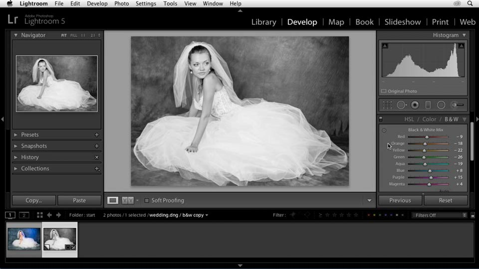 : Enhancing a Black-and-White Wedding Photo with Lightroom
