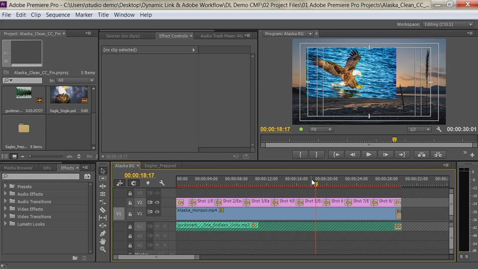 Welcome: Premiere Pro Guru: Dynamic Link and the Adobe Workflow