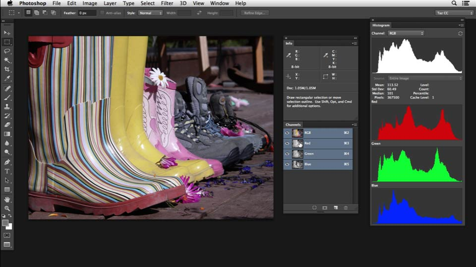 Welcome: Photoshop Color Correction: Advanced