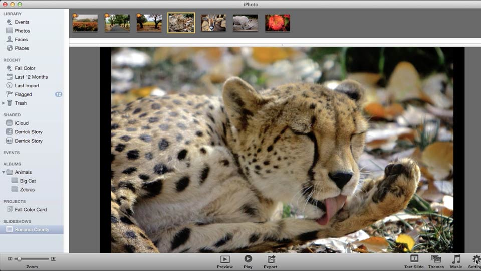 Welcome: Up and Running with iPhoto