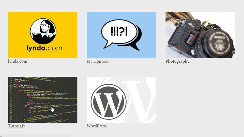 Welcome: WordPress Developer Tips: Adding Category Images