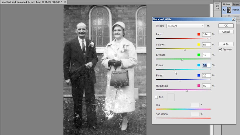 Welcome: Photo Restoration Techniques: Damaged Black-and-White Images