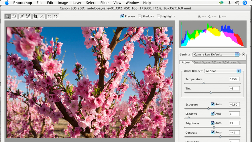 Welcome: Enhancing Digital Photography with Photoshop CS2