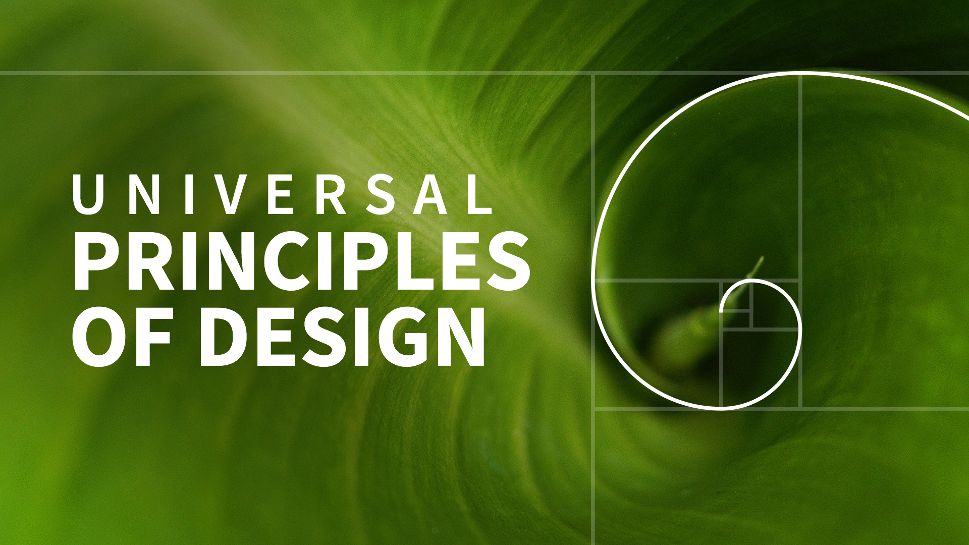 Figure ground: Universal Principles of Design