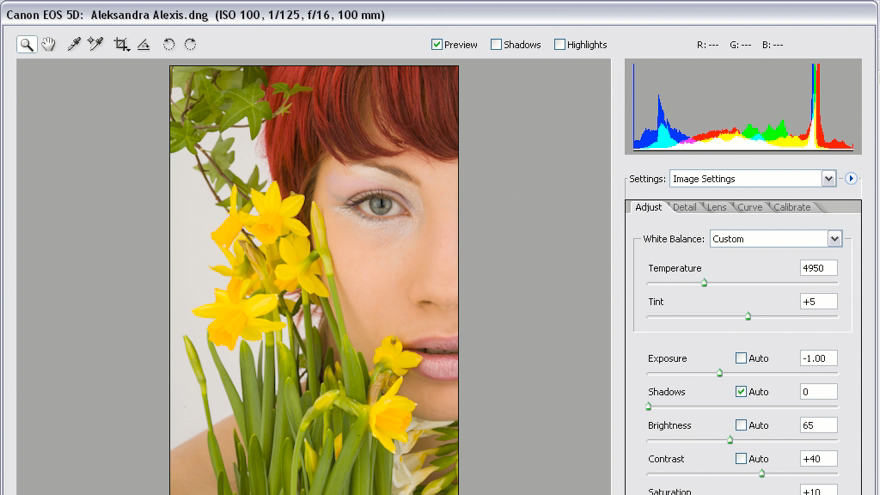 The unadulterated goodness: Photoshop CS2 Mastering Camera Raw