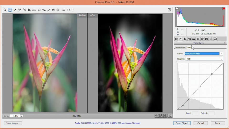 Welcome: Nondestructive Exposure and Color Correction with Photoshop CC (2014)