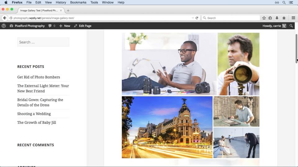 Welcome: WordPress and Genesis DIY: Showcasing Photography