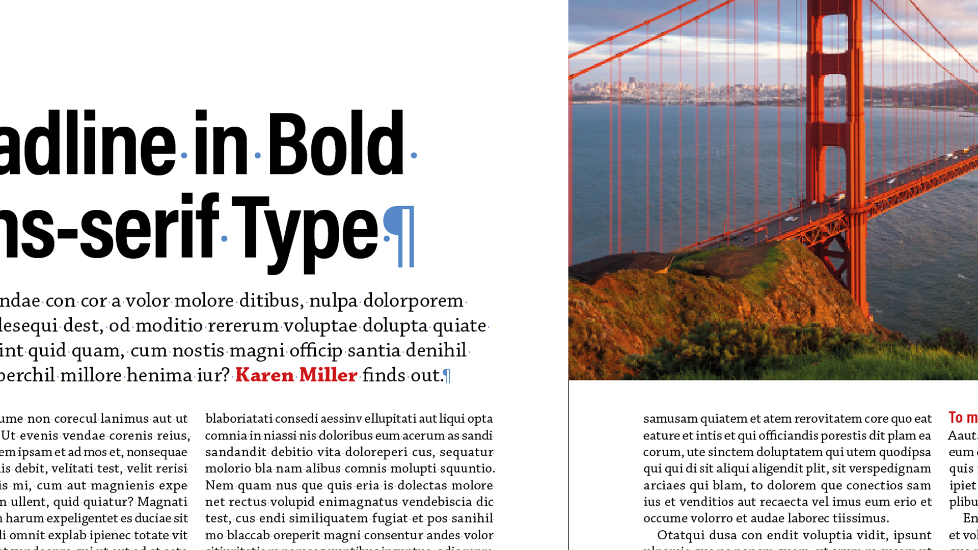 indesign elements of a layout