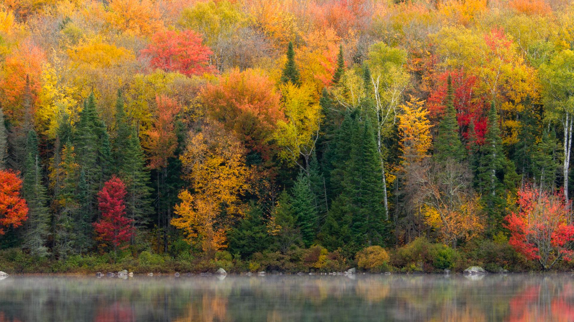 Landscape Photography Autumn