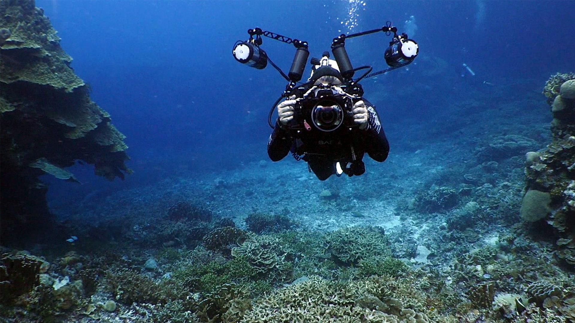 Welcome: Underwater Photography: Wide Angle