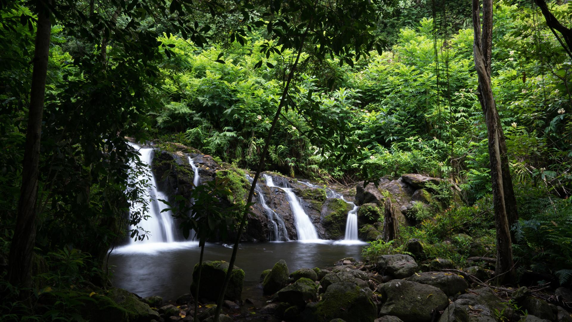 Landscape Photography Tropical Scenes
