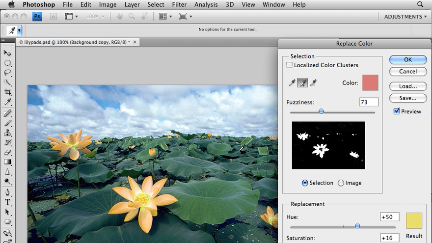 Welcome: Photoshop CS4: Image Adjustments in Depth