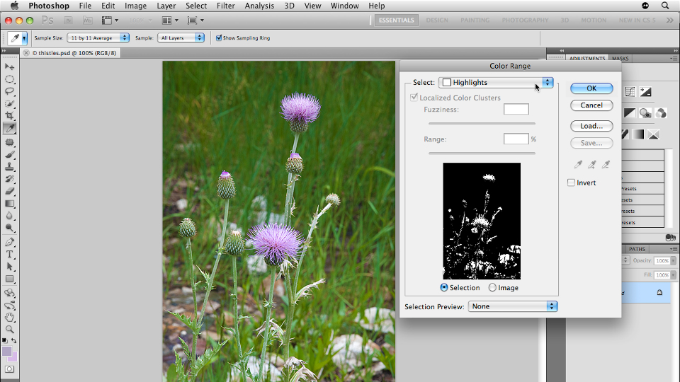 Welcome: Photoshop CS5: Selections in Depth