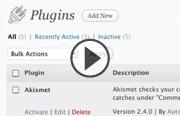 WordPress: Creating Custom Widgets and Plugins with PHP