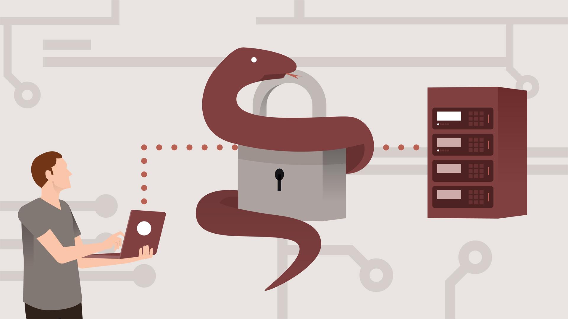 Python 3 SSH Network Automation Quick Start