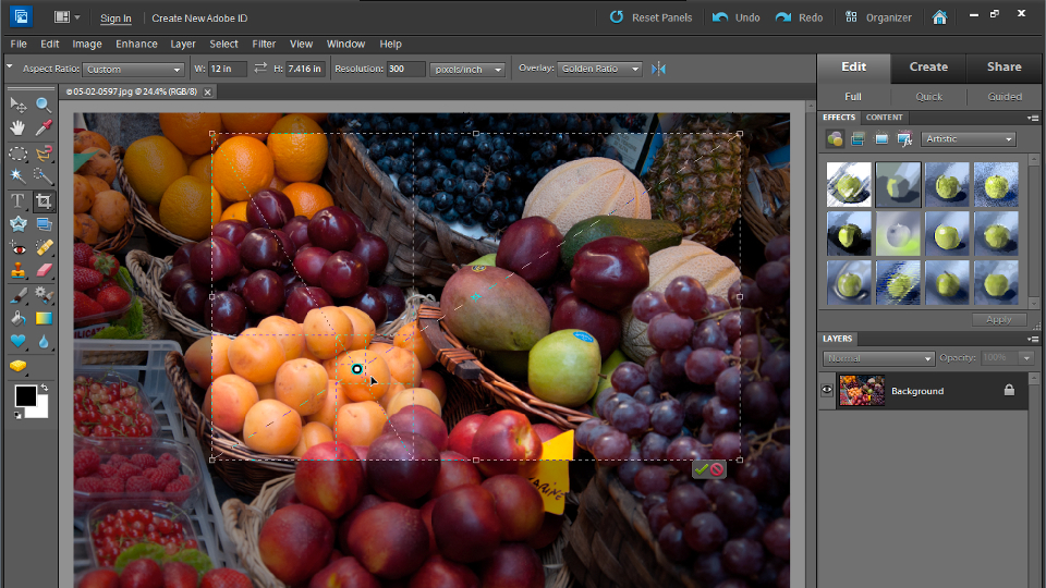 Welcome: Up and Running with Photoshop Elements 10