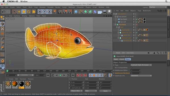 Cinema 4D Essential Training: 6 HyperNURB Modeling and Sculpting