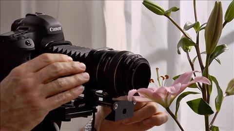 دانلود رایگان فیلم های آموزشی lynda | Photography Foundations: Macro and Close-Up