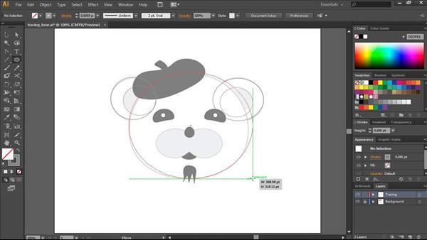Illustrator CC Essential Training
