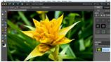 watch trailer video for Combining Images with Photoshop Elements 9