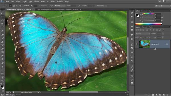 Photoshop CC One-on-One: Fundamentals
