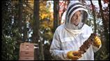watch trailer video for Lighting with Flash: Portrait of a Beekeeper and His Bees