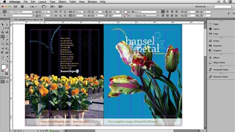 course illustration for Print Production: Prepress and Press Checks