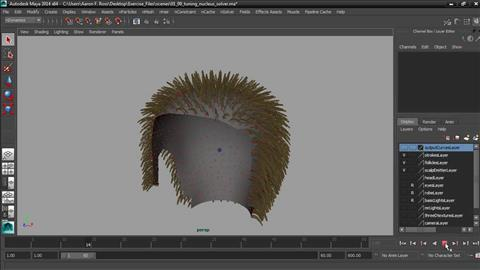 course illustration for Creating Hair with Maya nHair