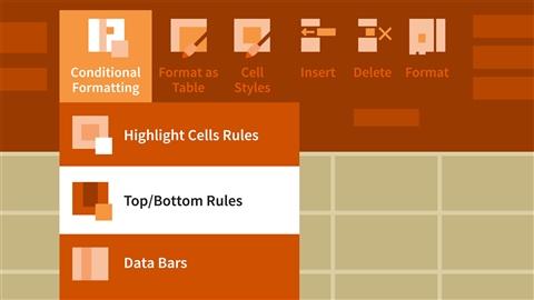 course illustration for Excel 2013: Advanced Formatting Techniques