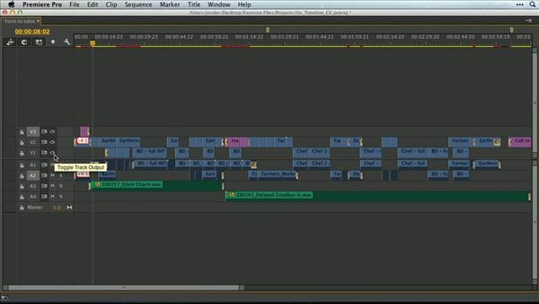 Expand And Collapse Adobe Premiere Pro Timeline Tracks