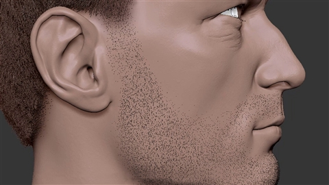 course illustration for ZBrush: Hair with FiberMesh