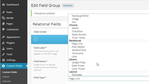 course illustration for WordPress Plugins: Advanced Custom Fields