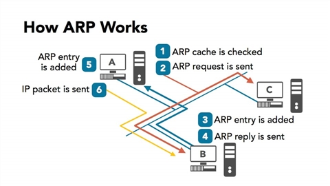 course illustration for Protect Your Network with Open-Source Software