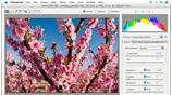Image for Enhancing Digital Photography with Photoshop CS2