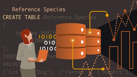 course illustration for Advanced SQL: Logical Query Processing, Part 1