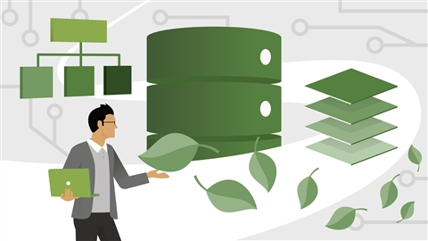 course illustration for Learning MongoDB