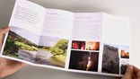 watch trailer video for Designing a Brochure