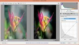 watch trailer video for Nondestructive Exposure and Color Correction with Photoshop CC (2014)